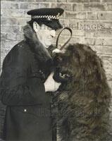 Jango-Police-Dog